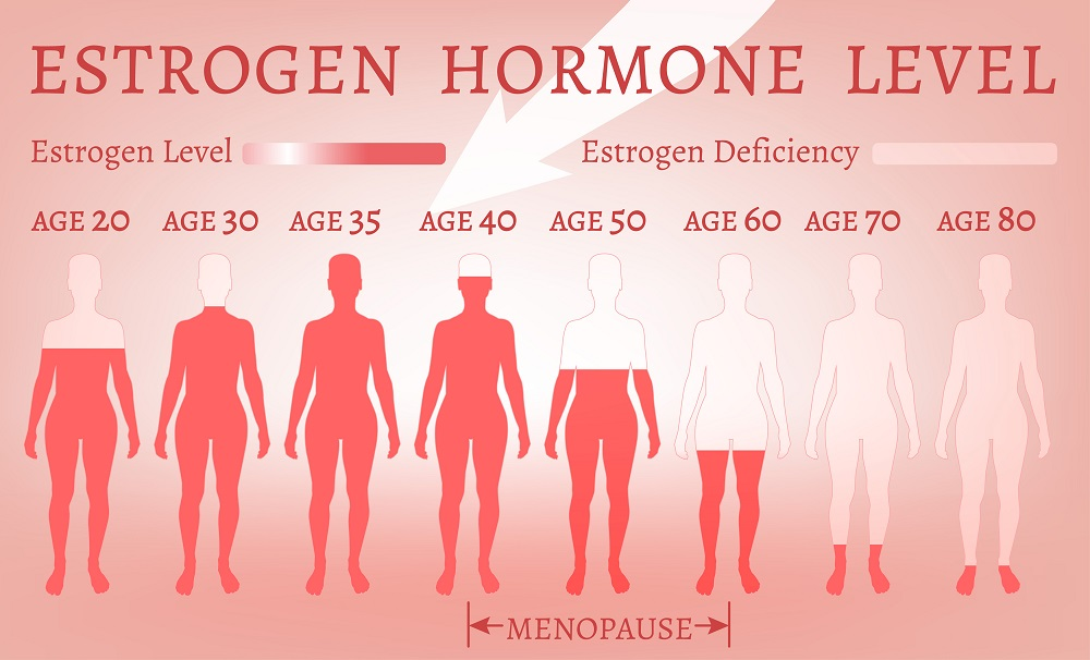 Estrogen levels in women