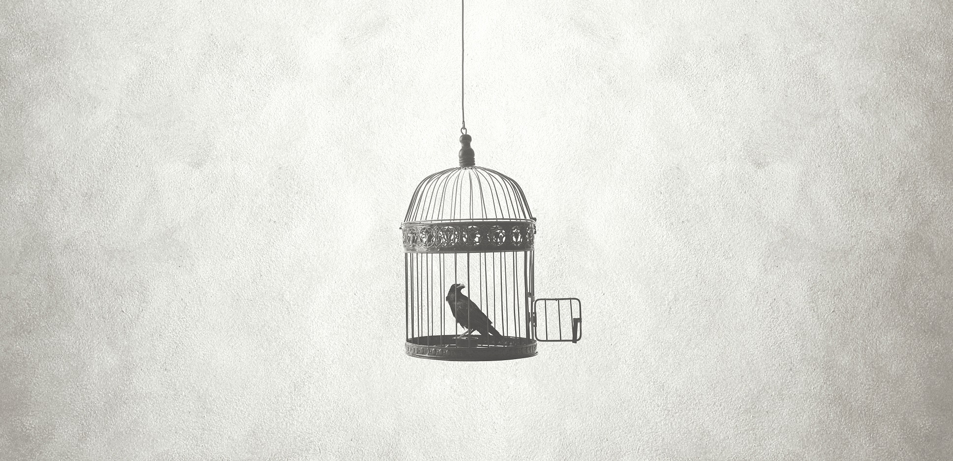 bird in the cage as a symbol of fear