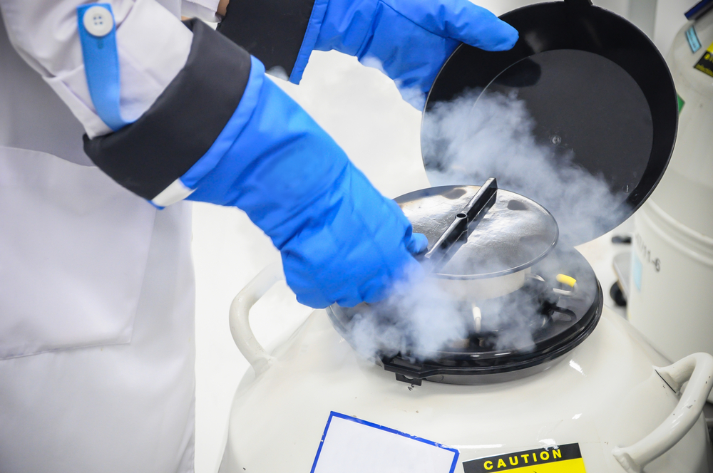 The process of freezing embryos