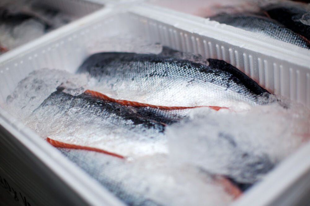 frozen fish is healthy and rich in omega-3 fatty acids