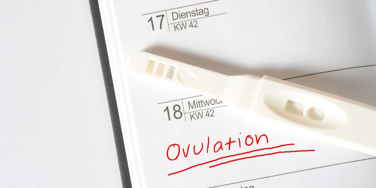 Ovulation kit: how to choose, how to use, and more!