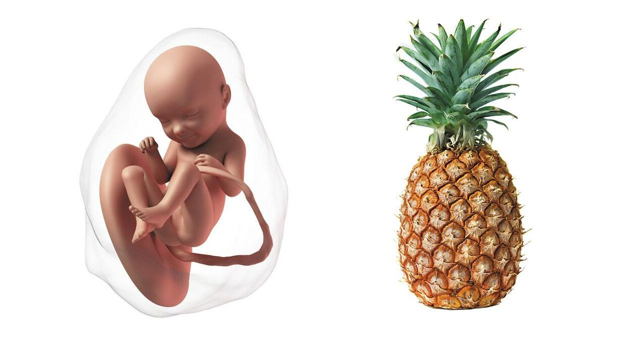 At 33 weeks pregnant, your baby is the size of a pineapple