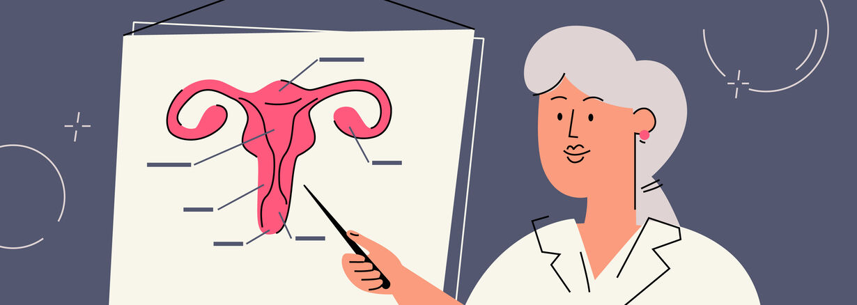 Vagina parts and what they do