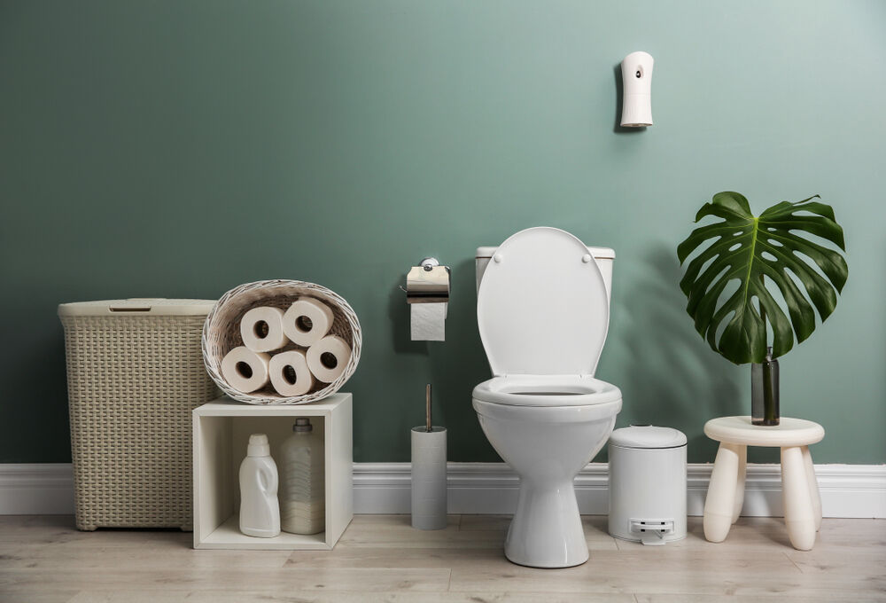 A toilet as a symbol of urinary incontinence
