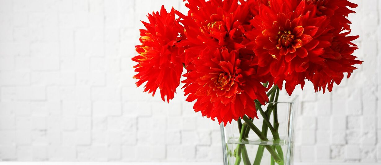 red flowers in the vase meaning blood clots