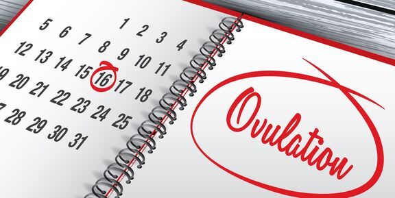 11 Days Past Ovulation
