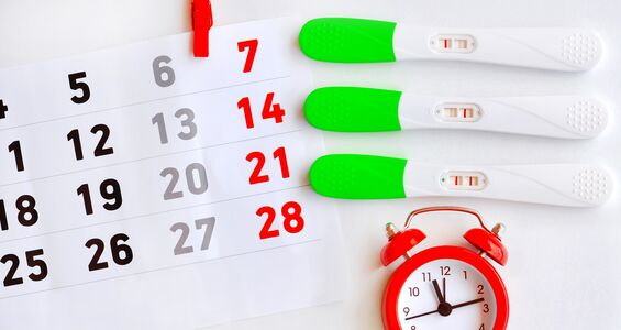 Best Time To Conceive When To Have Sex To Get Pregnant-9140